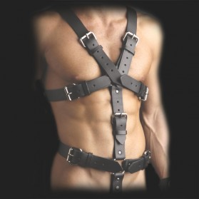 harness st591-sm