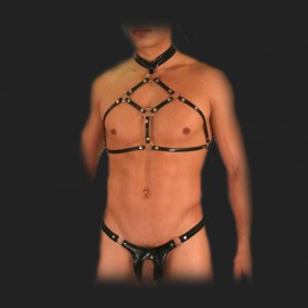 harness 6142
