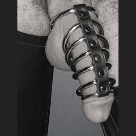 Les 7 Portes de l'Enfer , 7 anneaux de pénis